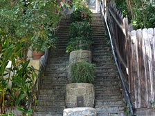 Saroyan Stairs at Beachwood Canyon